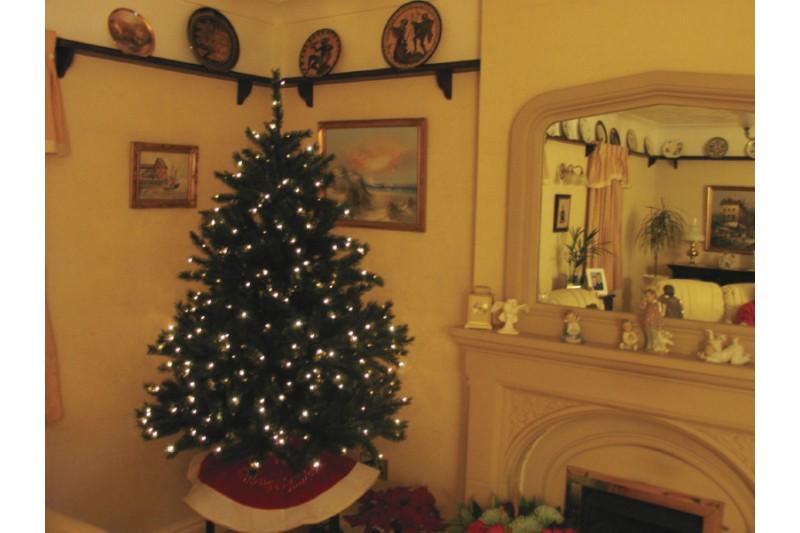 led mini christmas tree lights indoor 20m with 192 led bulbs