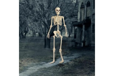 Halloween 5ft Pose N Stay Skeleton With LED Eyes Indoor Outdoor Decorations